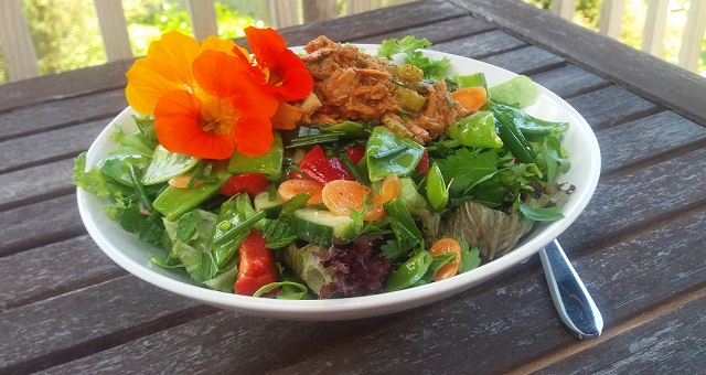 Wholesome home cooking simple recipes practical ideas summer salads forumfinder Image collections